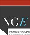 nge-icon
